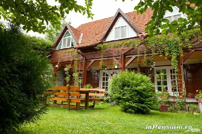 Pensiunea Zenit - accommodation in  Harghita Covasna, Tusnad (21)