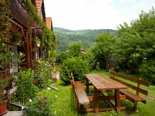 Pensiunea Zenit - accommodation in  Harghita Covasna, Tusnad (22)