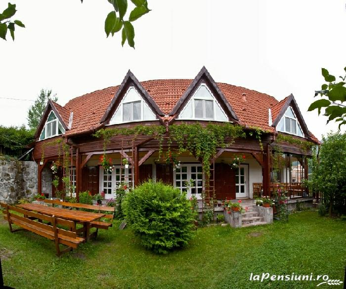 Pensiunea Zenit - accommodation in  Harghita Covasna, Tusnad (24)