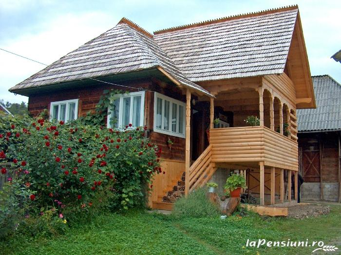 Pensiunea Grosan - accommodation in  Maramures Country (01)