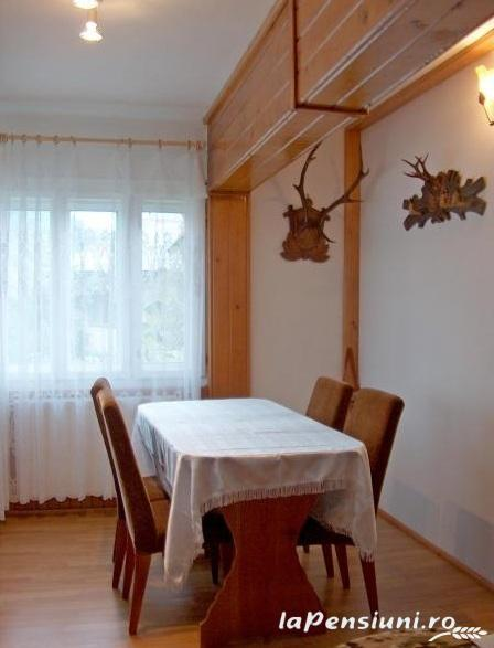 Pensiunea Grosan - accommodation in  Maramures Country (03)