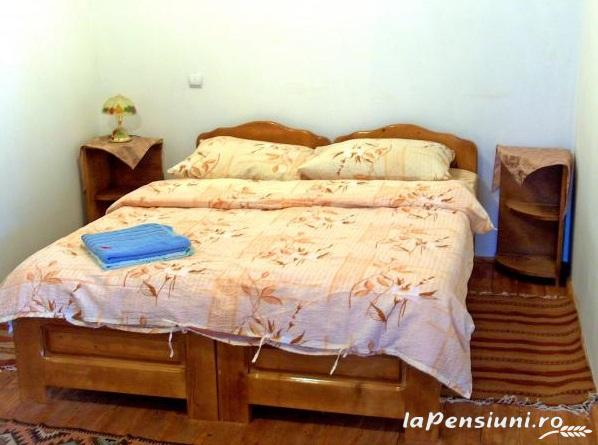 Pensiunea Grosan - accommodation in  Maramures Country (05)