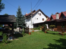 Rural accommodation at  Pensiunea Voichita