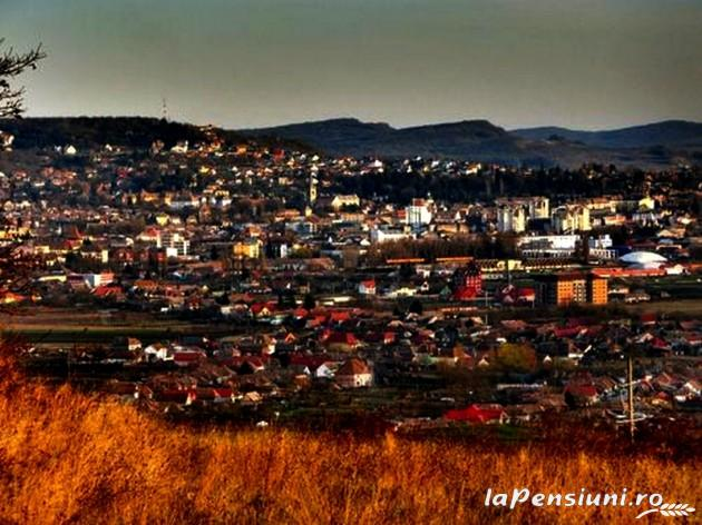 Casa De Pe Deal - accommodation in  Sighisoara (12)