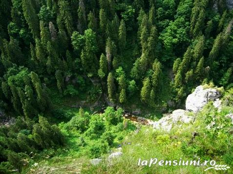 Pensiunea Carpathia - accommodation in  Apuseni Mountains (Surrounding)