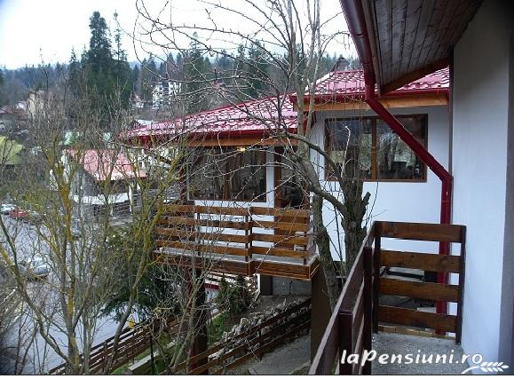 Pensiunea New Aosta Garden - accommodation in  Prahova Valley (15)