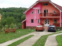 Rural accommodation at  Pensiunea Gavruta