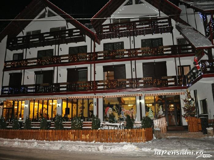 Pensiunea La Cetate - accommodation in  Fagaras and nearby, Transfagarasan (02)