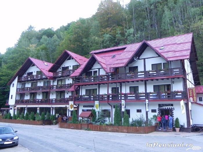 Pensiunea La Cetate - accommodation in  Fagaras and nearby, Transfagarasan (11)