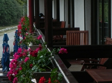 Pensiunea La Cetate - accommodation in  Fagaras and nearby, Transfagarasan (12)