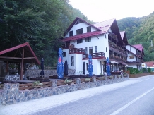 Pensiunea La Cetate - accommodation in  Fagaras and nearby, Transfagarasan (15)