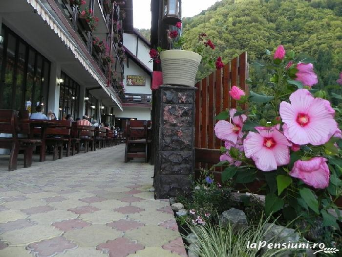 Pensiunea La Cetate - accommodation in  Fagaras and nearby, Transfagarasan (16)