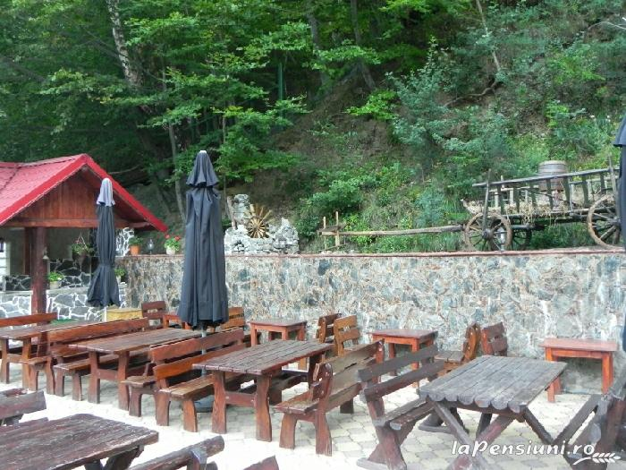 Pensiunea La Cetate - accommodation in  Fagaras and nearby, Transfagarasan (17)