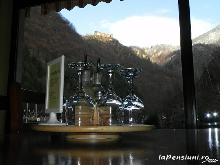 Pensiunea La Cetate - accommodation in  Fagaras and nearby, Transfagarasan (18)