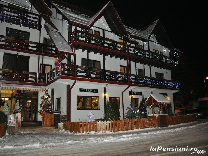 Pensiunea La Cetate - accommodation in  Fagaras and nearby, Transfagarasan (19)