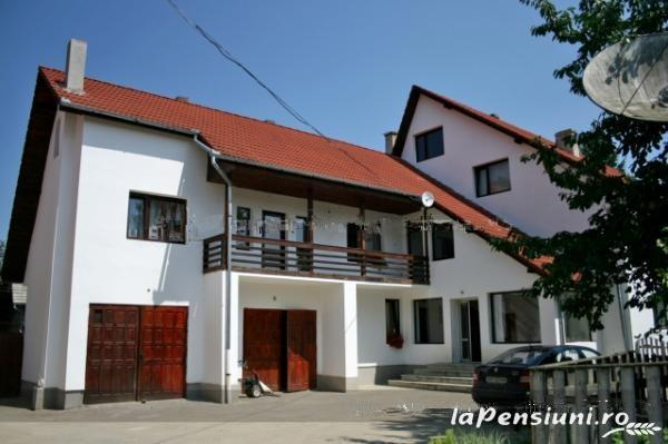 Pensiunea Haiducul - accommodation in  Fagaras and nearby (01)