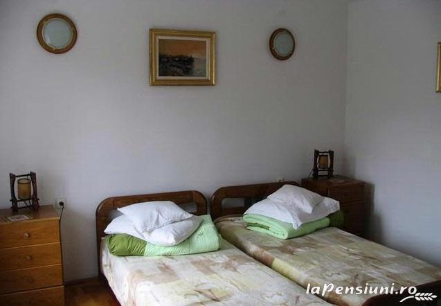 Pensiunea Haiducul - accommodation in  Fagaras and nearby (05)