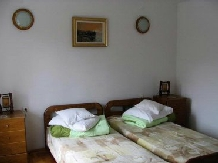 Pensiunea Haiducul - accommodation in  Fagaras and nearby (08)