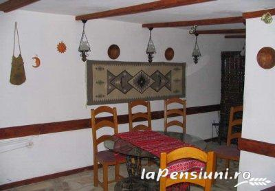 Pensiunea Haiducul - accommodation in  Fagaras and nearby (09)