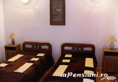 Pensiunea Haiducul - accommodation in  Fagaras and nearby (10)