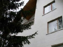 Pensiunea Haiducul - accommodation in  Fagaras and nearby (12)