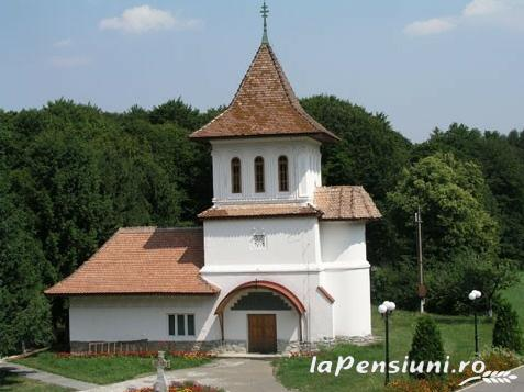 Pensiunea Izvorul - accommodation in  Fagaras and nearby, Sambata (Surrounding)