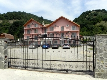 Pensiunea Flying Fish - accommodation in  Danube Boilers and Gorge (22)