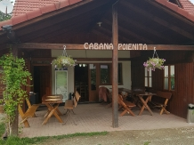 Rural accommodation at  Cabana Poienita