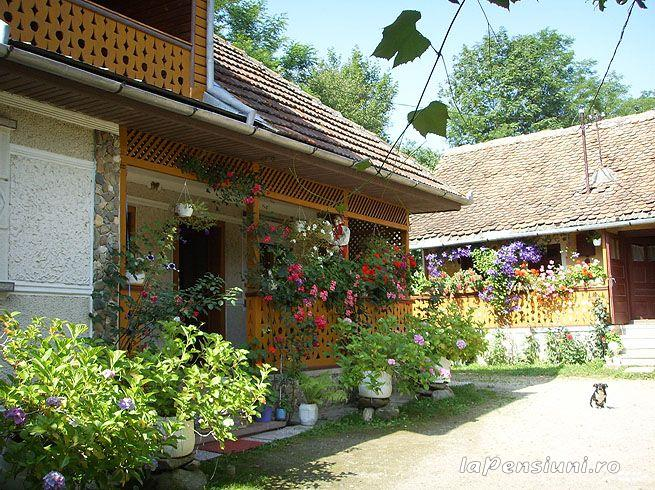 Pensiunea Moara cu Noroc - accommodation in  Fagaras and nearby (01)