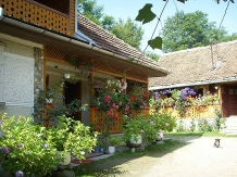 Pensiunea Moara cu Noroc - accommodation in  Fagaras and nearby (03)