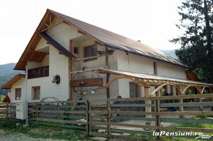 Casa Zimbru - accommodation in  Bucovina (01)