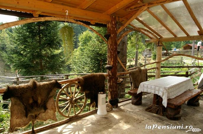 Casa Zimbru - accommodation in  Bucovina (02)
