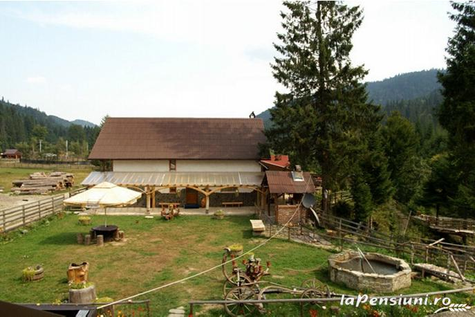 Casa Zimbru - accommodation in  Bucovina (03)