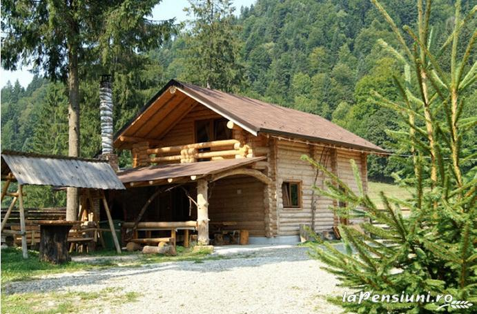 Casa Zimbru - accommodation in  Bucovina (04)
