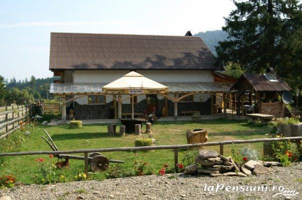 Casa Zimbru - accommodation in  Bucovina (11)