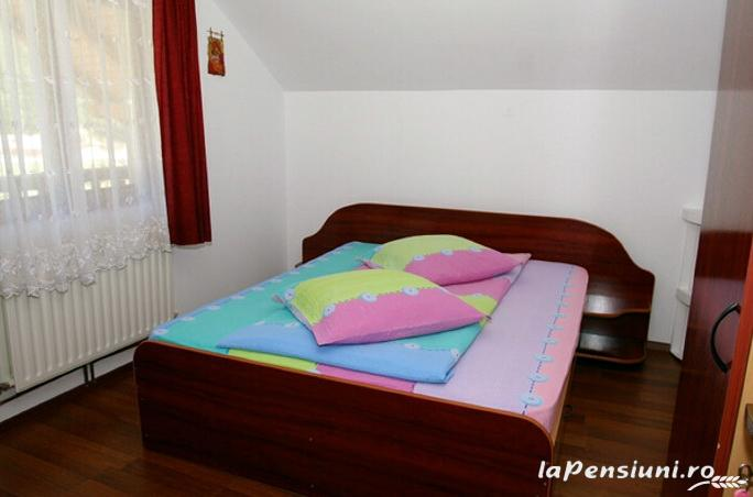 Casa Zimbru - accommodation in  Bucovina (12)