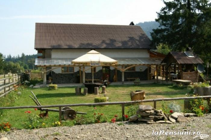 Casa Zimbru - accommodation in  Bucovina (16)