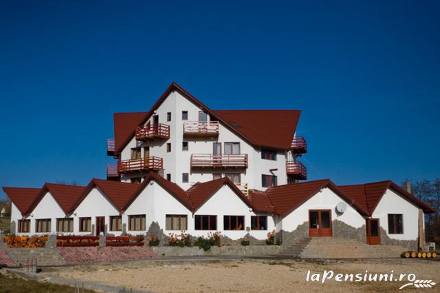 Pensiunea Coroana Reginei - accommodation in  Rucar - Bran, Moeciu, Bran (08)