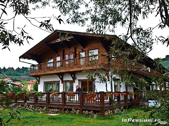 Pensiunea Tolstoi - accommodation in  Rucar - Bran, Moeciu, Bran (01)