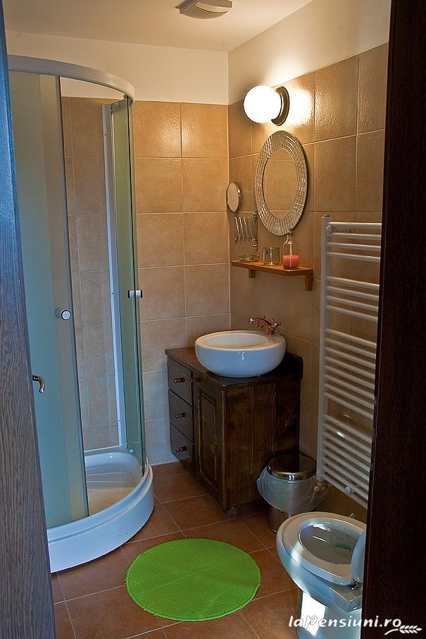 Pensiunea Tolstoi - accommodation in  Rucar - Bran, Moeciu, Bran (02)