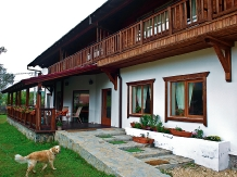 Pensiunea Tolstoi - accommodation in  Rucar - Bran, Moeciu, Bran (12)
