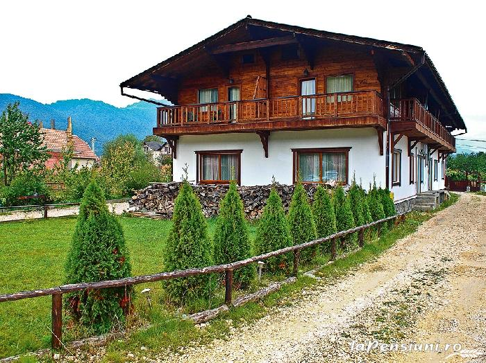 Pensiunea Tolstoi - accommodation in  Rucar - Bran, Moeciu, Bran (18)