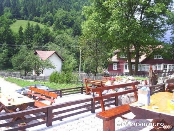 Pensiunea Perla Carpatilor - accommodation in  Rucar - Bran, Moeciu (03)