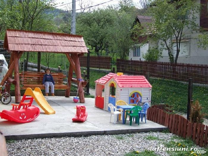 Pensiunea Ingrid - accommodation in  Rucar - Bran, Moeciu, Bran (09)
