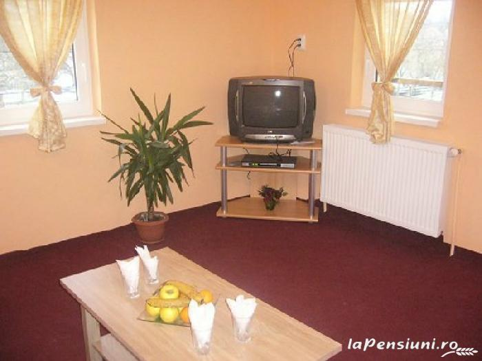 Pensiunea Ingrid - accommodation in  Rucar - Bran, Moeciu, Bran (15)
