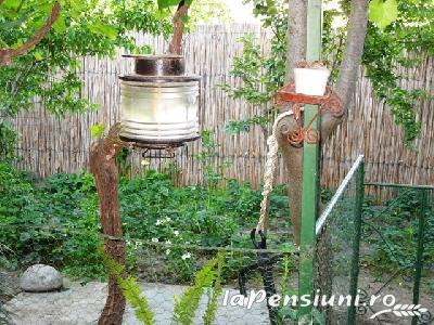 Casa Pescarus - accommodation in  Danube Delta (03)
