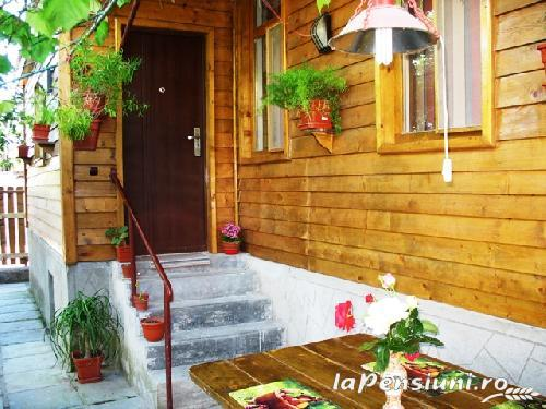 Casa Pescarus - accommodation in  Danube Delta (09)