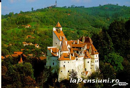 Pensiunea Stefi - accommodation in  Rucar - Bran, Moeciu, Bran (Surrounding)