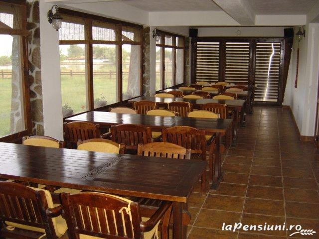 Pensiunea Eden - accommodation in  Danube Delta (11)