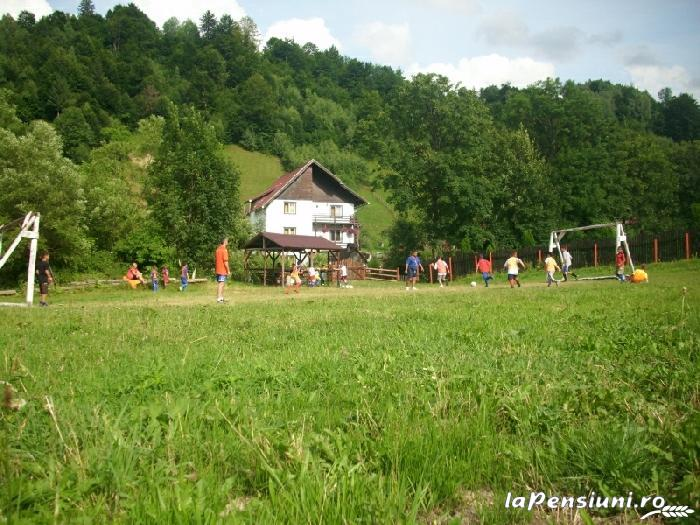 Vila Doina Branului - accommodation in  Rucar - Bran, Moeciu, Bran (05)